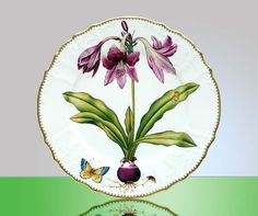 Dress up your table with hand-painted plates featuring single lily blooms.
