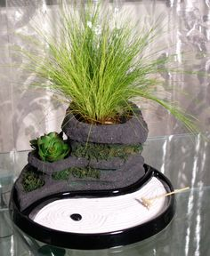 1000 images about miniature zen gardens on pinterest for Jardin yin yang