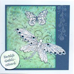 Vlinders Janneke Kijne