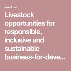 104 By Jimmy Smith | ILRI News blog | 2 Dec 2016 ('Livestock opportunities for responsible, inclusive and sustainable business-for-development partnerships')