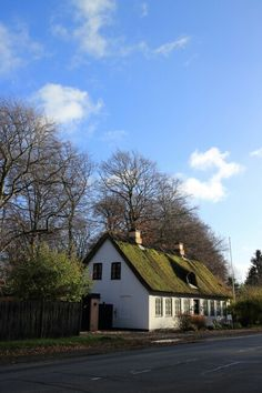 Typical Danish house