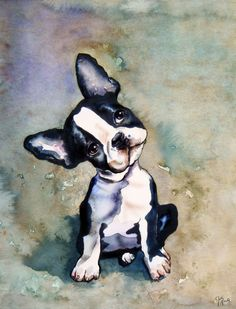 French bulldog pup - Julie Martin. WOW Julie has captured this little pup's expression perfectly. Great work.