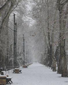 پنجشنبه #برف ی ، #تهران  #thr #tehran #snow #snowyday