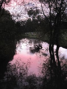 The river in Thame.