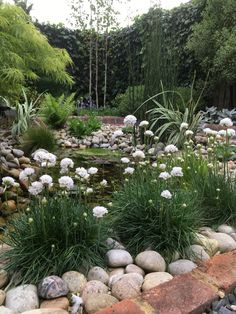 Garden Design and Build all-in-one solution based in Salisbury, Wiltshire Bespoke Design, Thrift, Planting, Stepping Stones, Garden Design, Sea, Landscape, Outdoor Decor, Flowers
