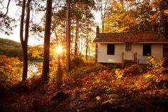 'Golden Sunrise', United States, New Hampshire, Lake Winnipesaukee, Pitchwood Island, Sunrise by WanderingtheWorld (www.LostManProject.com), via Flickr