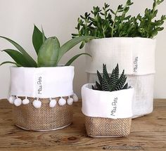 House Plants Decor, Plant Decor, Diy Home Crafts, Diy Home Decor, Bedroom Plants, Craft Markets, Dollar Store Crafts, Home And Deco, Diy Art
