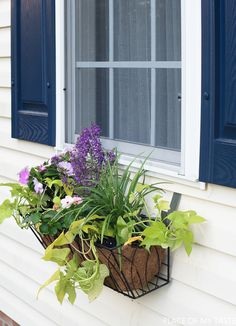 Learn how to hang a window flower basket on vinyl siding without damaging the siding.