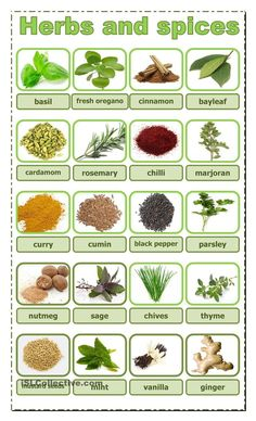 herbs and spices - English ESL Worksheets for distance learning and physical classrooms English Tips, English Food, English Study, English Class, English Lessons, Learn English, Food Vocabulary, Grammar And Vocabulary, English Vocabulary