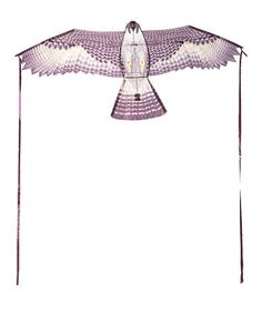 Another great find on #zulily! Falcon Kite #zulilyfinds