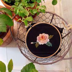 Rose  #embroidery #needlework #handembroidery #stiching #꽃자수 #프랑스자수 #창작자수 #장미자수#rose#flower #애플톤울사#appletons