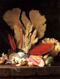 "transistoradio: "" Anne Vallayer-Coster Still-Life with Tuft of Marine Plants, Shells and Corals oil on canvas, 97 x 130 cm. Collection of Musée du Louvre, Paris, France. Via Wikimedia Commons. Still Life Painting, Fine Art, Oil On Canvas, Still Life, Still Life Art, Painting, Illustration Art, Sea Shells, Art"