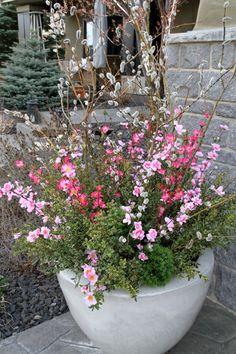 Spring Planters with Pussy Willows