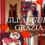 Buon Natale da Grazia.it!    Un video speciale per augurarvi Buon Natale da tutta la redazione di Grazia.it! .News dal Mondo FASHION.. Per i vostri acquisti, visitate www.dadeshoes.com, scarpe e accessori firmati ai prezzi più bassi del web! LIU JO, CESARE P, VIC MATIE', GABS, D'ACQUASPARTA, LORIBLU, DOUCAL'S,  REFRIGUE, BAGGHY e molto altro ancora! Non troverete prezzi più bassi su tutto il web.. provare per credere...le migliori informazioni sui trend del momento. Dadé