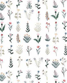 """119 mentions J'aime, 4 commentaires - aurélie soligny (@plumetismagazine) sur Instagram : """"Subtilités florales @boccaccinimeadows⠀⠀ Need a little Spring today ⠀⠀ ⠀⠀ #ditsy #floral #fleurs…"""""""