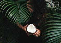 20 façons d'utiliser l'huile de coco dans votre routine beauté - Les Éclaireuses