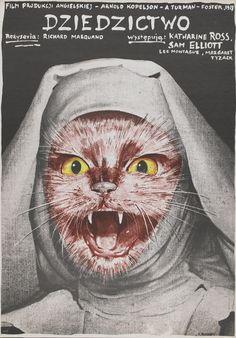 Nun cat.
