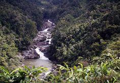 Ranomafana Nationalpark auf Madagaskar Reiseführer