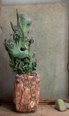 Monvillea Spegazzinii Monster, Pot from Keith Kitoi Taylor
