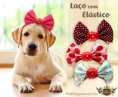 Puppy Nursery, Pet Dogs, Pets, Dog Clothes Patterns, Dog Crafts, Pet Fashion, Dog Bows, Dog Wear, Dog Pattern