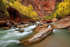 """Entrance to Zion Narrows - """"Gorge of Generations"""" by Stephen Oachs (ApertureAcademy.com), via Flickr"""