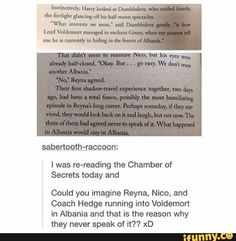 This is awesome for three reasons. 1. Harry Potter 2. CHBC 3. Sabertooth-racoon