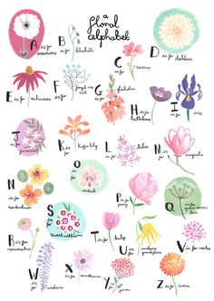 Floral Alphabet | Emma Block // Etsy || Watercolour floral illustration