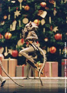 un rat casse noisette Barbie Nutcracker, Nutcracker Costumes, Ballet Costumes, Royal Ballet, Beatrix Potter, Dark Circus, Ballet Performances, Animal Medicine, Cosy Christmas