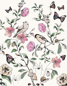 Birds, flowers and butterflies (I hope you see something else )