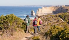 http://www.australiantraveller.com/vic/great-ocean-road/your-guide-to-the-great-ocean-walk/