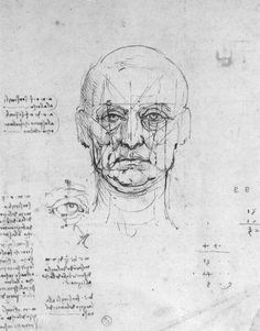 LEONARDO da Vinci  Study on the proportions of head and eyes  -  Pen and ink, 197 x 160 mm  Biblioteca Reale, Turin