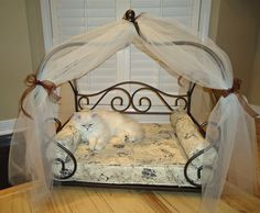 "Another pinner said ""French country cat bed.  My chinchilla silvers fight over this bed."" Idk why but the idea that cats fight over a bed....and the fact that the cats have a fancy bed.... lol"