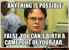 'Anything is Possible' / False. you can't Birth a Camel out of your ear.