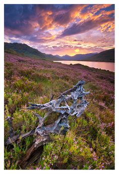 Lomond Trossachs National Park, Loch Arklet. Scotland  Loch Arklet by SebastianKraus