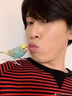 Cute Boys, Snowman, Man Stuff, Twitter, Japan, Men Stuff, Cute Teenage Boys, Snowmen, Japanese