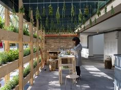 A host stationed at the area serves herbal tea from the plants to display water as a stimulating, nourishing element. System Architecture, Green Architecture, Wooden Ramp, Herbal Plants, Herbal Tea, Water Drip, Urban Nature, Water Collection, Venice Biennale