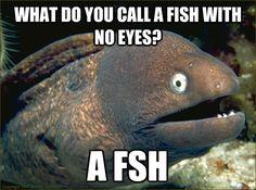 Bring back bad joke eels please