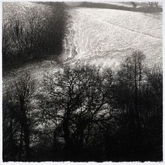 Oaks and Light Snow by Sarah Gillespie - Charcoal on Arches paper x Charcoal Art, Charcoal Drawings, Still Life Artists, Out Of The Woods, Arches Paper, The Draw, Cool Landscapes, Landscape Art, Landscape Photography