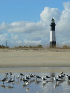 Tybee Island Lighthouse, Georgia.  Just out of Savannah.  Go to www.YourTravelVideos.com or just click on photo for home videos and much more on sites like this.