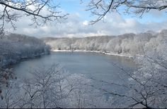 Beautiful Hi resolution photo of Lake Glacier on a cold winters day. Mill Creek Park, Lake Mills, Glacier Lake, Youngstown Ohio, Things To Do, The Neighbourhood, Rivers, Lakes, Outdoor