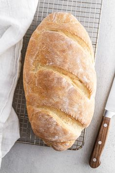 Homemade Italian Bread made from scratch! Soft on the inside with a delightfully chewy crust, you can bake this bread in your own kitchen using just five ingredients and two hours start to finish. French Toast Bake, French Toast Casserole, Italian Bread Recipes, Scone Recipes, Recipe Girl, How To Make Bread, Bread Making, Breakfast Bake, Baking Tips