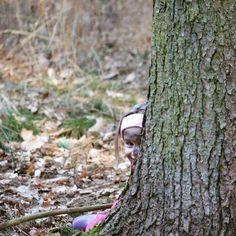 Die Winterruhe ist vorbei! Heute starten die Waldläufer in ein neues Jahrmit spannenden Abenteuern großartigen Entdeckungen wildem Naturhandwerk und ganz viel Spaß in der Natur  #naturbegegnungen #wildnisschule #wildnispädagogik #naturmentoring #naturkinder #naturkids #waldläufer #scout #draussenzuhause #natureconnection
