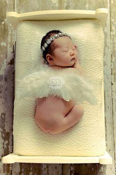 Cherub angel newborn
