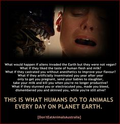 Think about what you actually do when you eat animals and their by-products. Most people can't think about it or are too selfish to care!