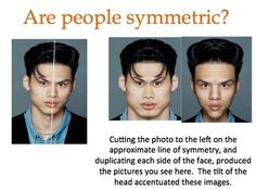 Slideshow that introduces the concept of symmetry to students. Uses real world examples of point symmetry, line symmetry, translations, reflections and rotations. Bad Memes, Stupid Funny Memes, Funny Facts, Dankest Memes, Funny Relatable Memes, Weird Facts, Funny Quotes, Hilarious, Psychology Questions