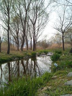 Yangsuri Ecology Park in Korea