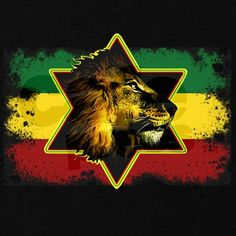 Reggae Art, Reggae Style, Reggae Music, Rastafari Art, Weed Posters, Rasta Art, Bob Marley Art, Lions Photos, Nesta Marley