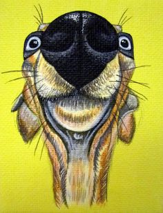 Big Nose dog - acrylic on canvas Greyhound Art, Italian Greyhound, Tangled Cartoon, Skinny Dog, Foto Poster, Cute Dog Pictures, Dog Silhouette, Grey Hound Dog, Animal Sketches
