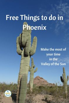 I've compiled a list of free things to do in Phoenix anytime of the year, along with some useful tips to keep you healthy in the desert. #phoenixaz #freethingstodophoenix