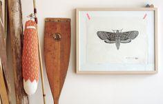Poster: Mister Moth. $56,00, via Etsy.